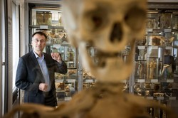 """On the conservation and display of human remains: """"Museums Confront the Skeletons in Their Closets"""""""